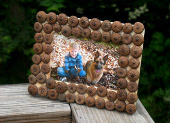 Ideal for making an autumn frame